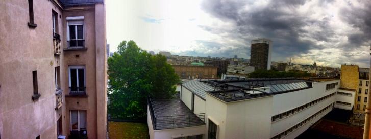 Paris Toilet View