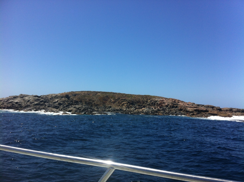 Neptune Islands