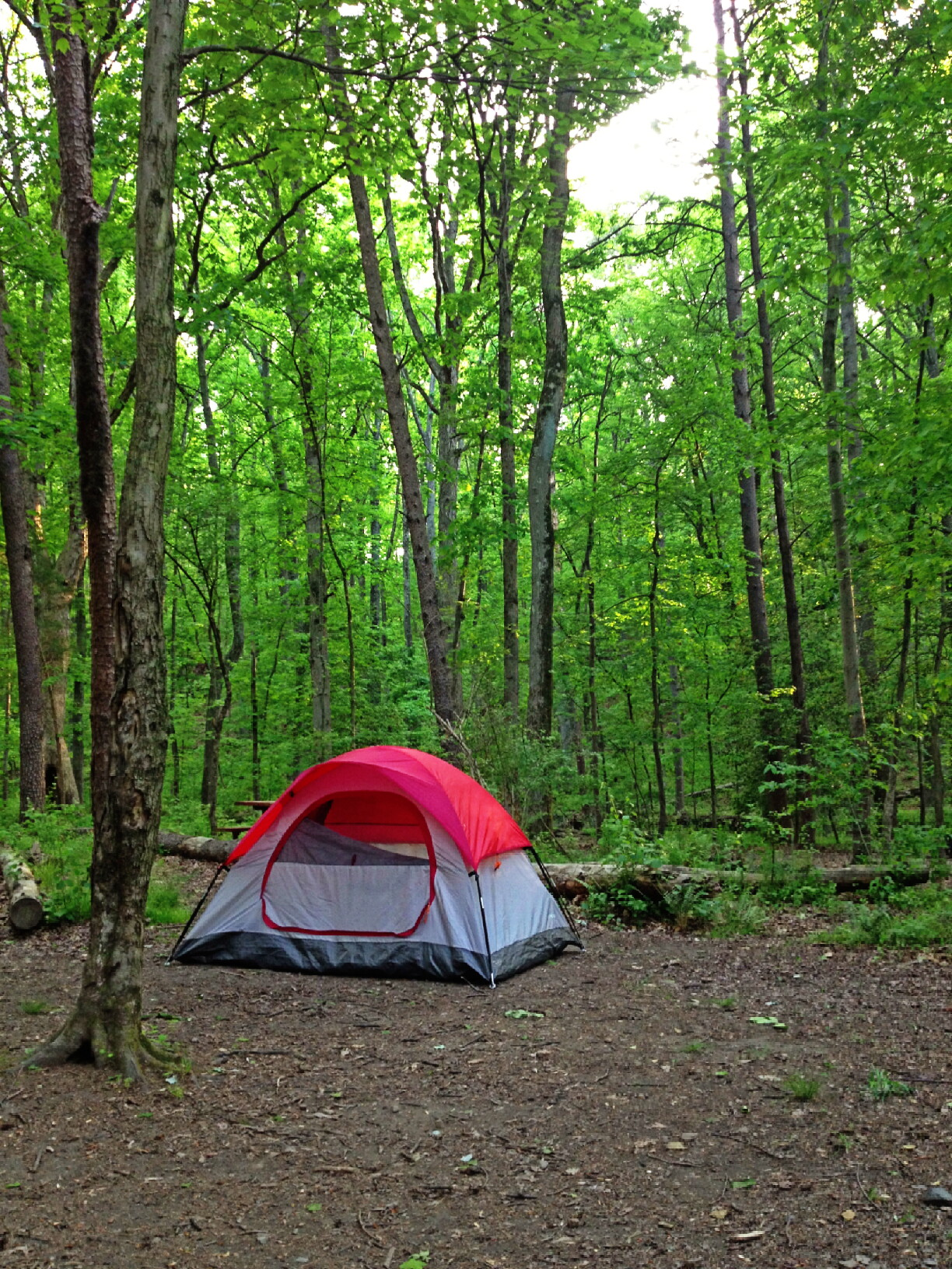 Camping outside Washington DC